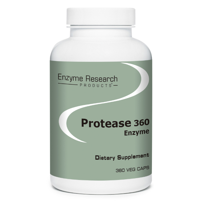 Protease 360 Enzymes